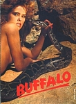 BUFFALO Jeans 1b - french 20 ANS 3-1985